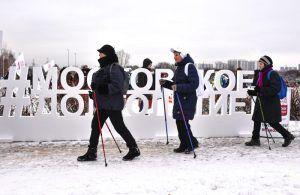«Москвоское долголетие», «Мосволонтер» и МЭШ стали лучшими соцпроектами. Фото: Пелагия Замятина, «Вечерняя Москва»