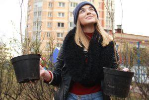 Более семи тысяч растений высадят в столице. Фото: Наталия Нечаева, «Вечерняя Москва»