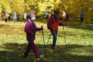 Занятие по скандинавской ходьбе пройдет в Екатерининском парке. Фото: Анна Быкова