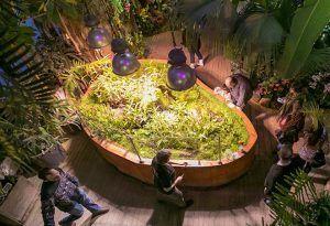 Арт-объект представят в «Аптекарском огороде». Фото: сайт мэра Москвы