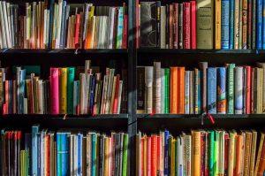 Онлайн-мероприятие проведут на сайте библиотеки №1 имени Александра Грибоедова. Фото: Анна Быкова
