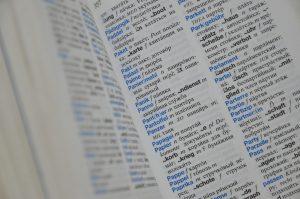 Статью о Международном дне родного языка опубликовали на сайте библиотеки для слепых. Фото: Анна Быкова