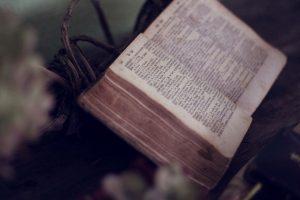 Книжно-иллюстративная выставка о Петре I откроется в библиотеке для слепых. Фото: pixabay.com
